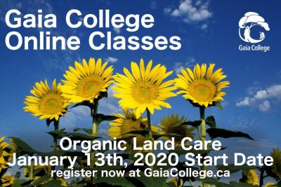 Gaia College