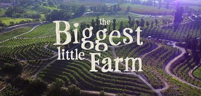 biggest-little-farm