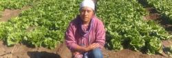 Celsa Ortega