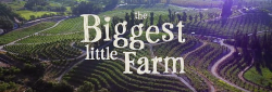 biggest-little-farm