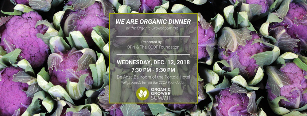 We Are Organic Dinner