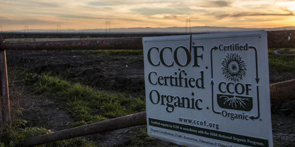 CCOF Signs